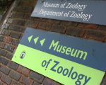 Museum of Zoology Sign